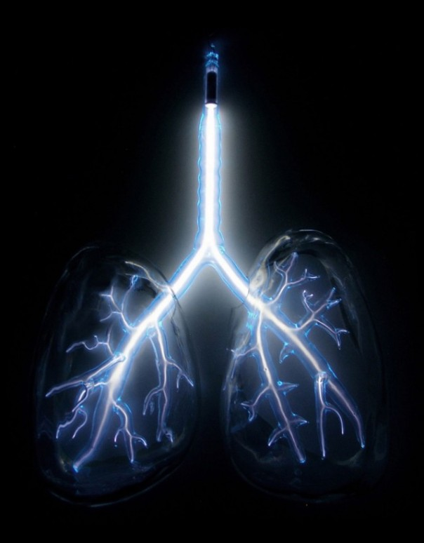 Neon sculpture of lungs